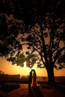 Silhouette of wedding couple in love kissing and holding hand together during sunset with evening sky