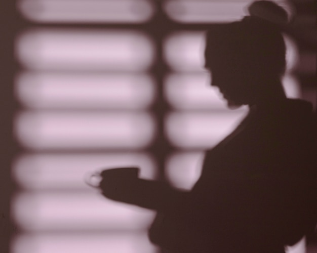 Sagoma di donna a casa con le ombre delle finestre