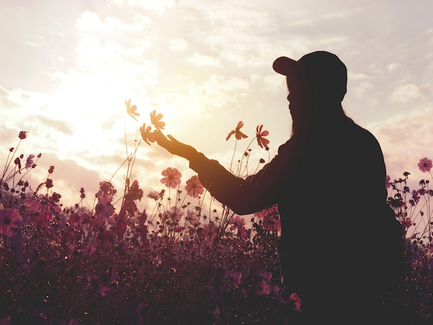 Silhouette woman in pink cosmos flower field at sunset.