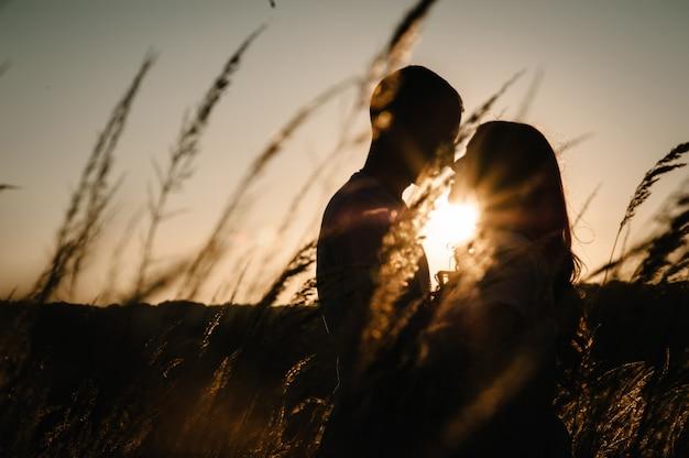 シルエットの若いカップルはハグ、フィールドで屋外で秋にキス、夕日に草。男性と女性。フレンドリーな家族の概念。上半分。閉じる。