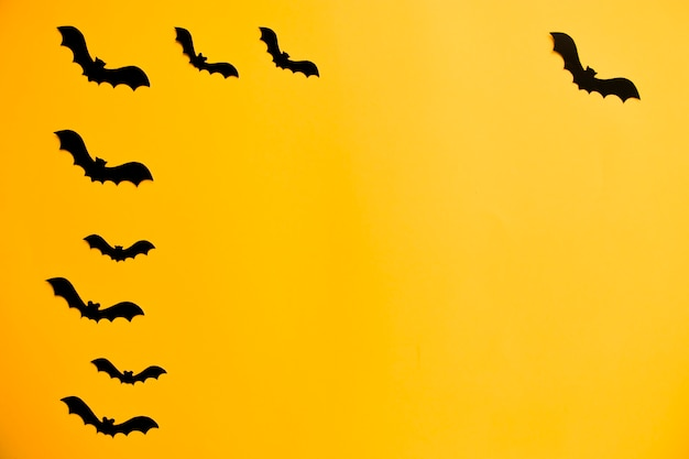 Silhouettes of black bats made of paper on orange background. halloween concept
