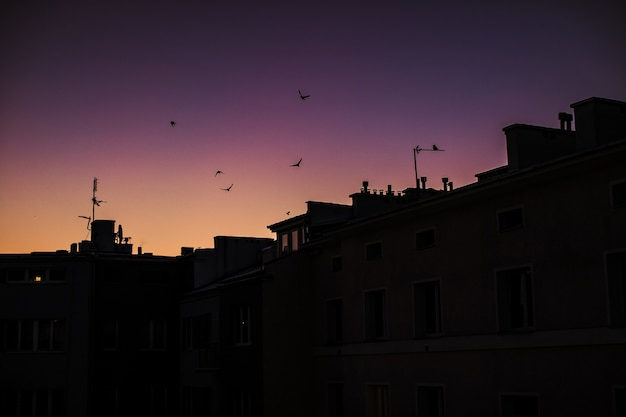 Silhouettes of the buildings with the purple sunset sky
