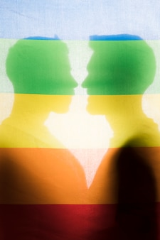Silhouettes of gay couple behind rainbow flag