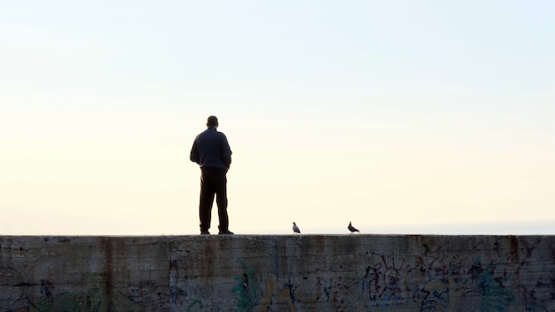 Silhouettes of man and pigeons standing on pier at sunset