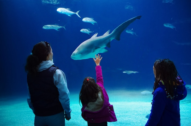 Silhouettes of mother with kids in oceanarium, family with children looking at shark and fishes in aquarium