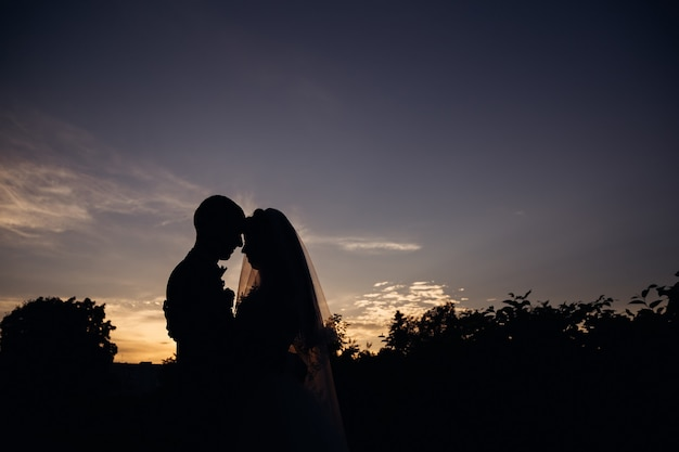 The silhouettes of the newlyweds lean to each other over the evening sky.