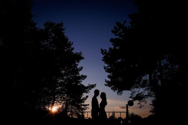 Силуэты пара стоящих в вечерних огнях