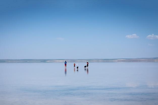 トルコで2番目に大きい湖である有名な観光塩湖トゥズに沿って歩く人と犬のシルエット。