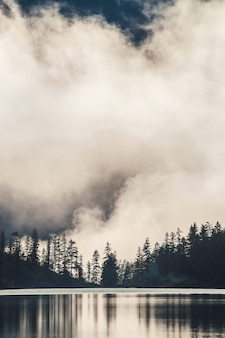Силуэты заостренных еловых вершин на склоне холма вдоль горного озера в густом тумане