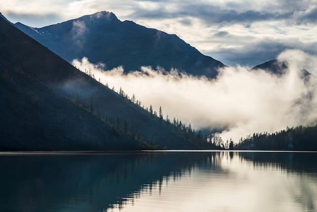 Силуэты заостренных верхушек деревьев на склоне холма вдоль горного озера в густом тумане.