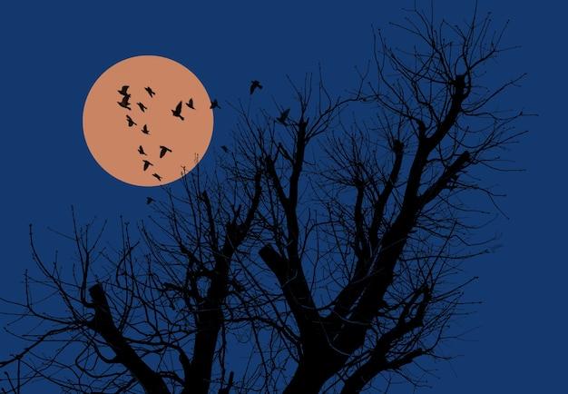 月と鳥と夕方の空を背景に木のシルエット