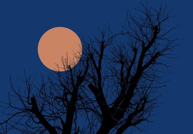 달과 함께 저녁 하늘의 배경에 나무의 실루엣.