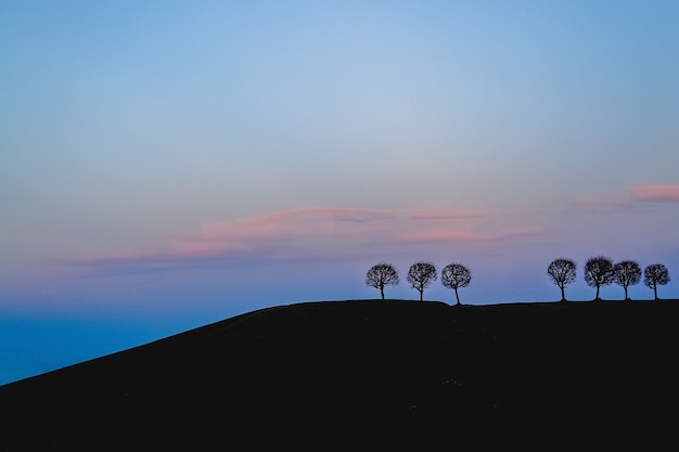 Silhouettes of trees on a hill in the distance against the colored evening sky.