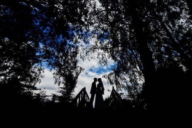 Silhouettes of a wedding couple of the bride and groom hugging and kissing