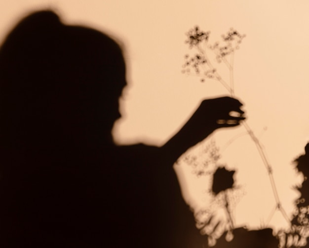 Silhouettes of woman holding a flower