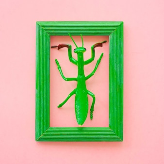 Silicone toy grasshopper in green frame on pink background