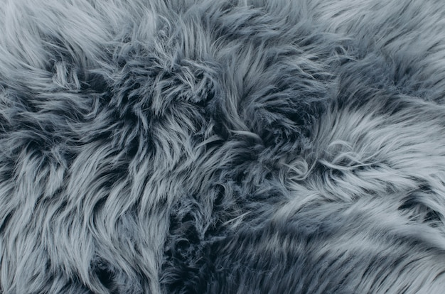 Silver fox fur coat texture background.