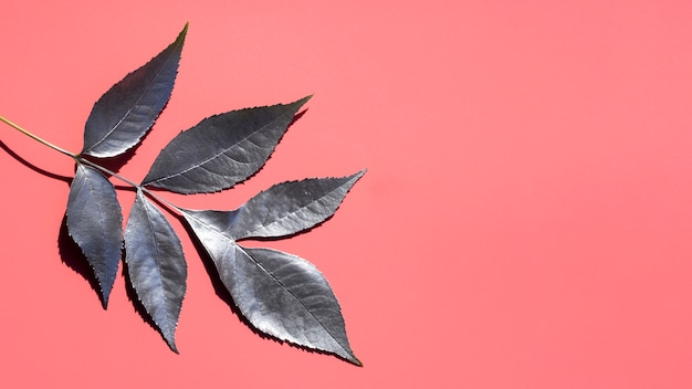 Silver paint of leaves and pink copy space background
