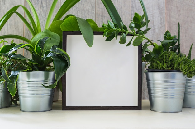 Silver potted plant decorated with white picture frame