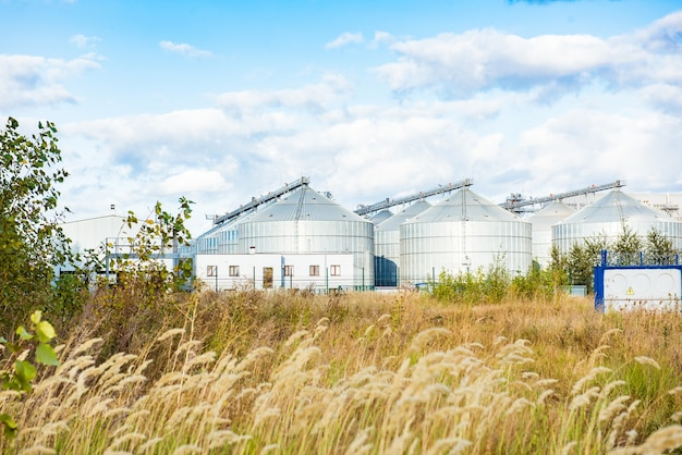 Серебряные силосы на агропромышленном предприятии для обработки, сушки, очистки и хранения сельскохозяйственной продукции