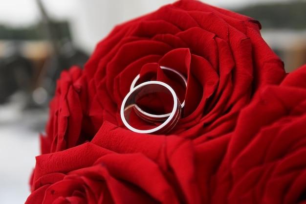 화려한 장미 꽃다발에 은색 결혼 반지