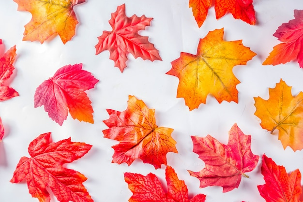Simple autumn leaves pattern