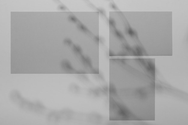 Simple brochure overlay with vegetation shadow