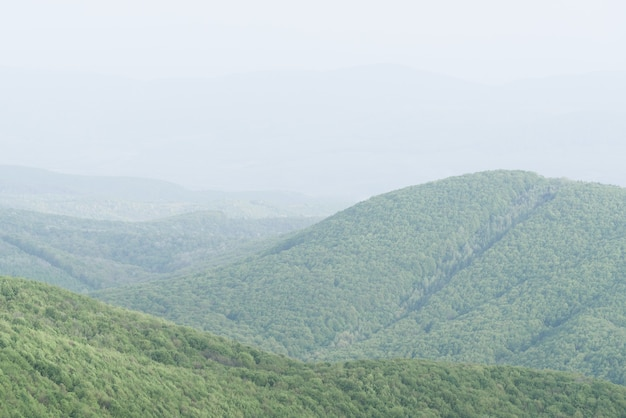 薄緑のパステルカラーと山の霞のシンプルなミニマルな春の風景