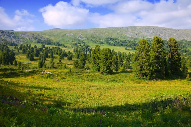 シンプルな山の風景