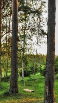 К деревьям подвешивают простые качели.