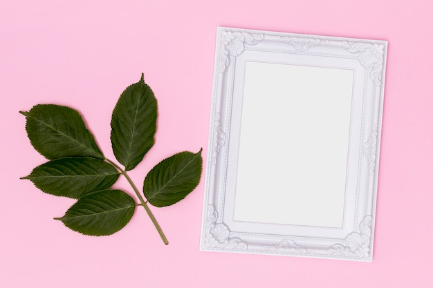 Simplistic empty frame with twig of leaves