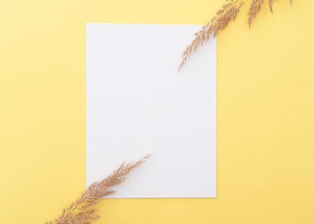 Просто осенняя композиция с белым чистым листом бумаги, листьями деревьев и сухой травой