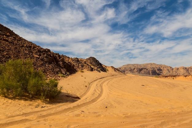 山に囲まれたシナイ砂漠