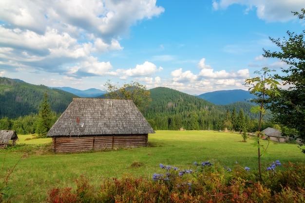 森sinevirカルパティア山脈で放棄された古い木造住宅。