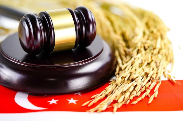 Singapore flag and judge hammer with gold grain from agriculture farm