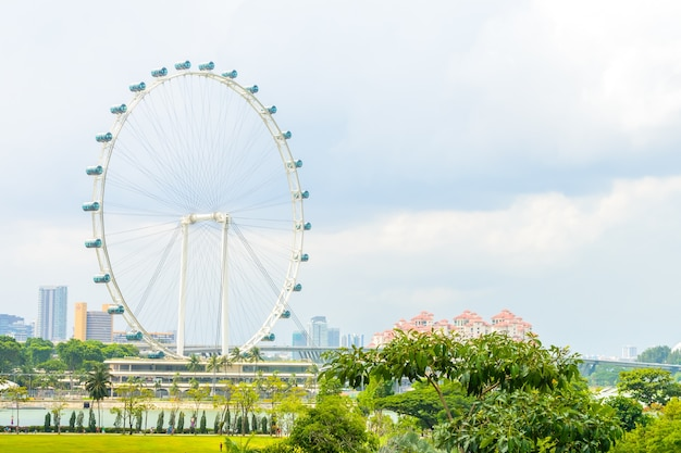 Singapore flyer at singapore