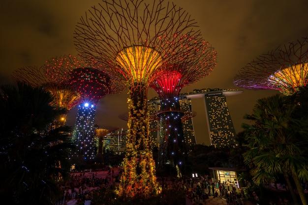 ガーデンズバイザベイのシンガポールナイトスカイライン