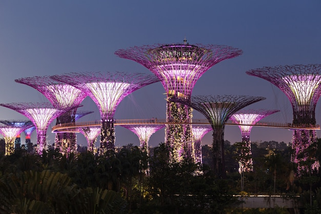 シンガポール-2014年10月15日:ガーデンズバイザベイは、シンガポール中心部にある101ヘクタールに及ぶ公園です。