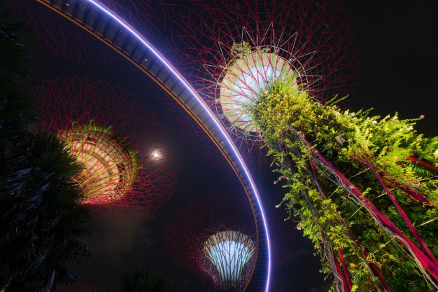 Singapore supertrees in garden by the bay at bay south singapore.