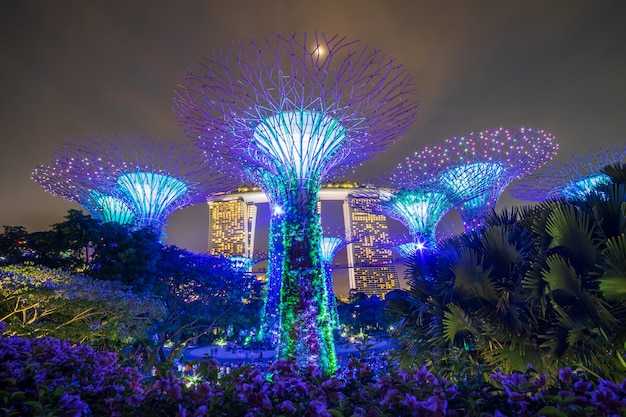 Singapore travel concept