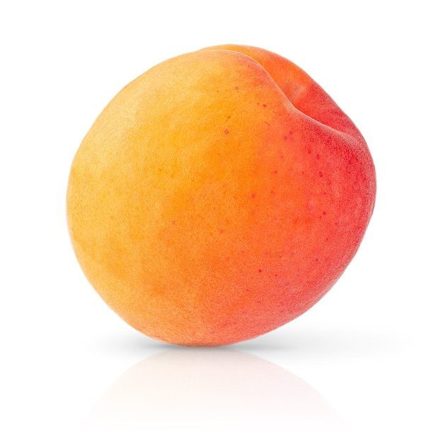 Одиночный абрикос, изолированные на белой поверхности с обтравочным контуром. закрыть вверх