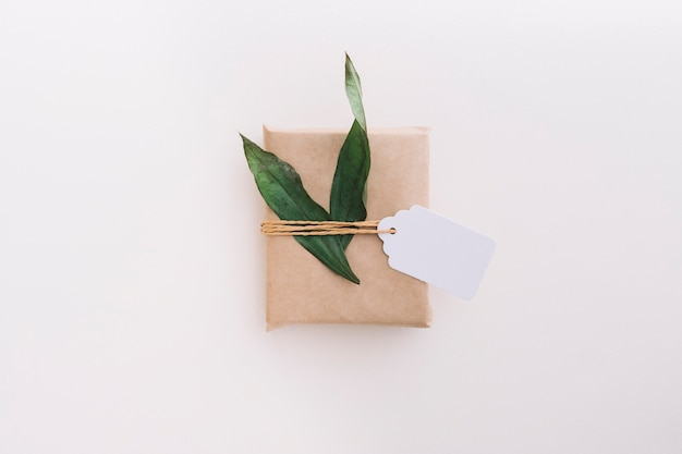 Single brown wrapped gift box tied with tag and leaves on white background