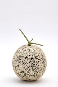 Single cantaloupe melon on white