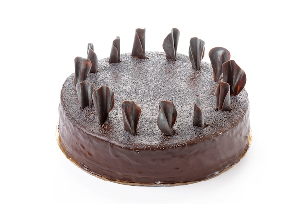 Один шоколадный торт изолированные крупным планом