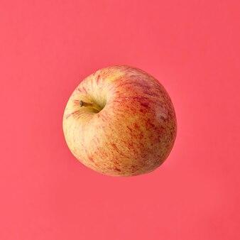 분홍색 배경에 고립 된 단일 신선한 원시 사과