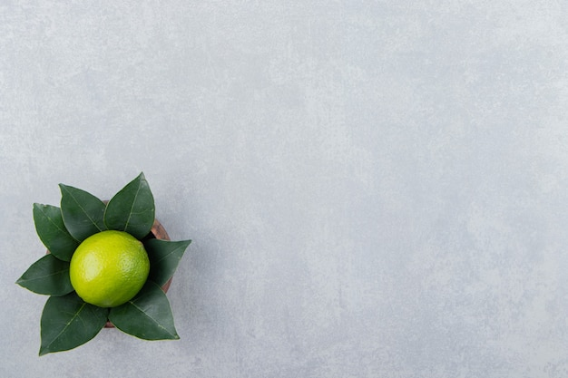 Single lime with leaves in wooden bowl