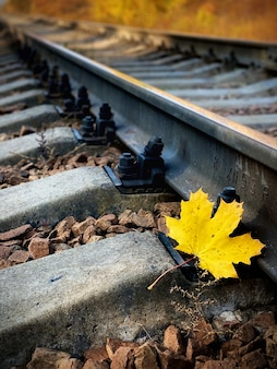 Single rail as part of a railway. autumn yellow maple leaf on the rails. wooden sleepers and gravel are also visible.