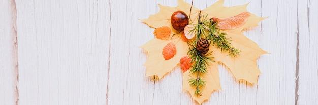 Одиночный красный и желтый сухой осенний кленовый лист, на бежевом деревянном фоне сверху - каштаны, семена клена и веточка лиственницы с шишками. концепция падения, плоская планировка. знамя