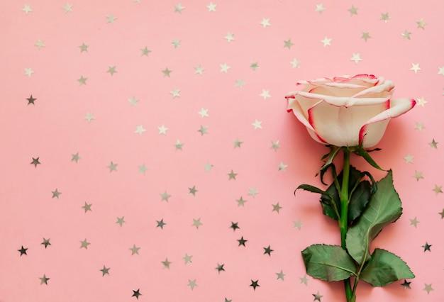 Одиночный цветок розы с голографическими звездами на розовом фоне