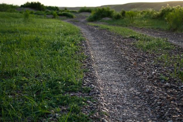 시골 란카셔의 양쪽 농장 트랙에 녹색 울타리가 있는 단일 트랙 도로
